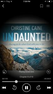 undaunted audio book